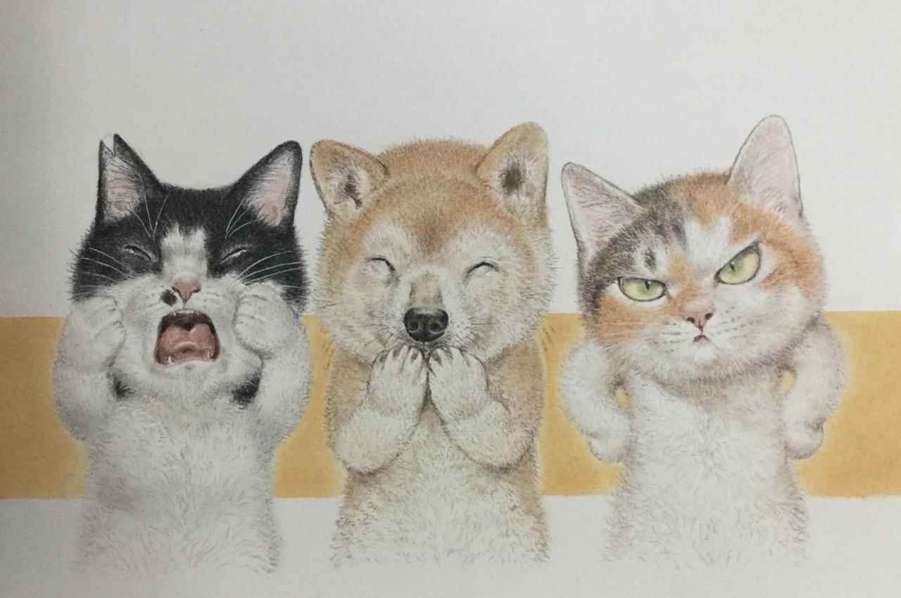 猫 しゃべる 鹿児島 弁